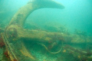Baltiore_diving