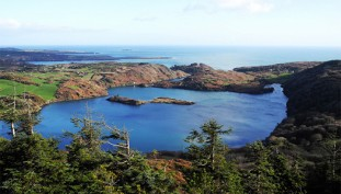 Lough Hyne Loop Walk