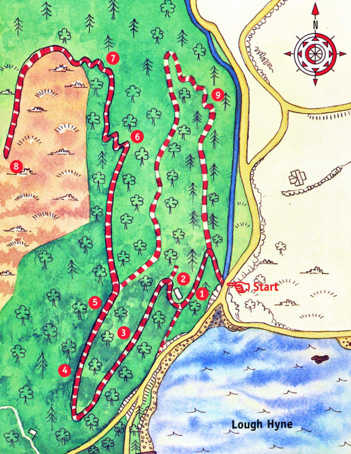 Knockomagh Trail